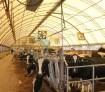 Демонстрационная ферма